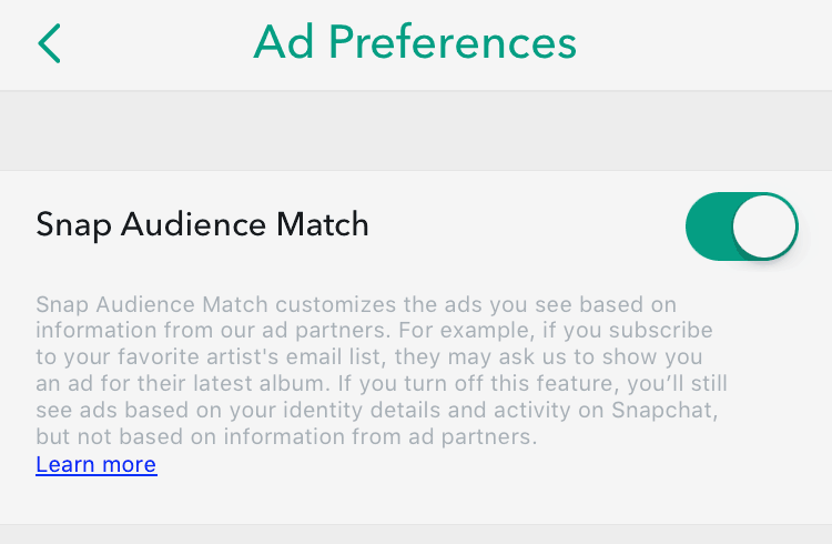 snap-audience-match